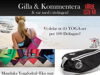 Facebook-inlägg-Gilla-Kommentera-1